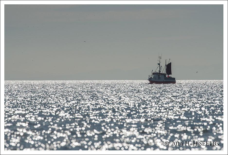 Fischerboot auf dem Varangerfjord
